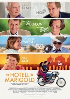Amazon Best Marigold Hotel Dvd